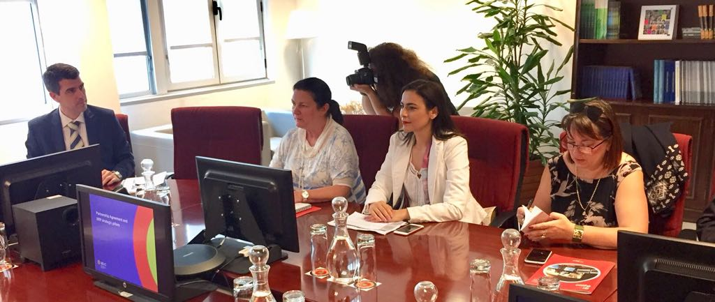 Gabriela Zoana in comisia REGI