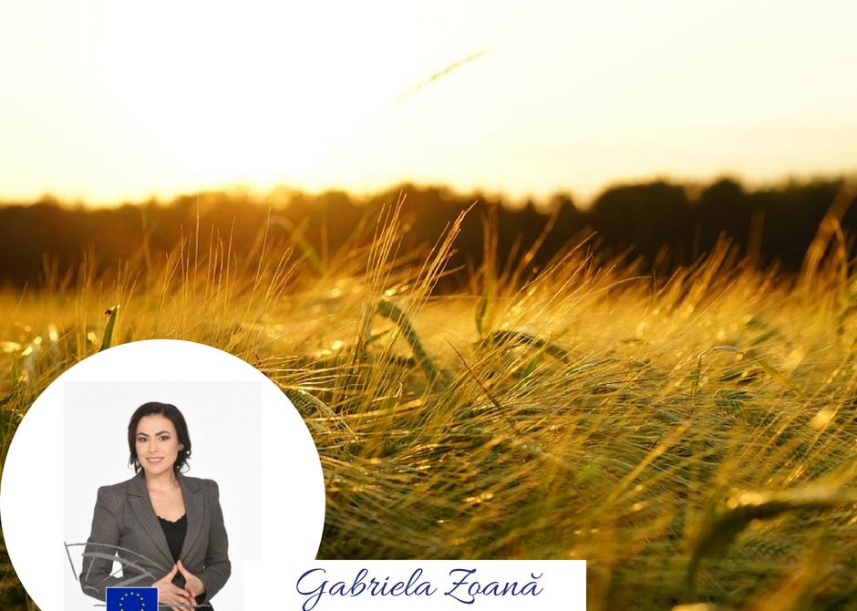 """Dezbatere: """"Agricultura – prioritate pentru Președinția României la Consiliul Uniunii Europene"""""""