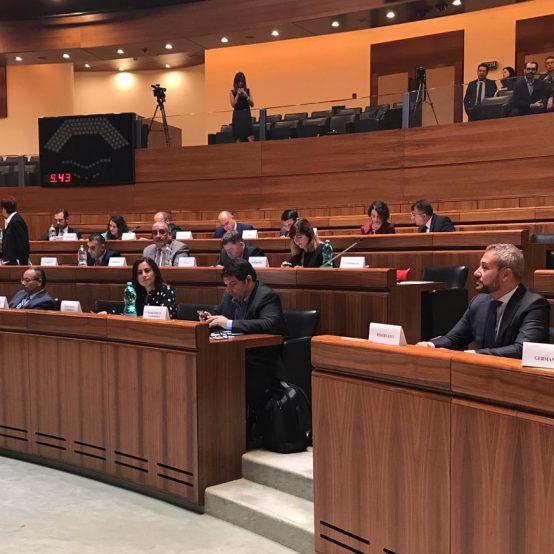 Adunarea Parlamentara a Uniunii pentru Mediterana, Cagliari 2018