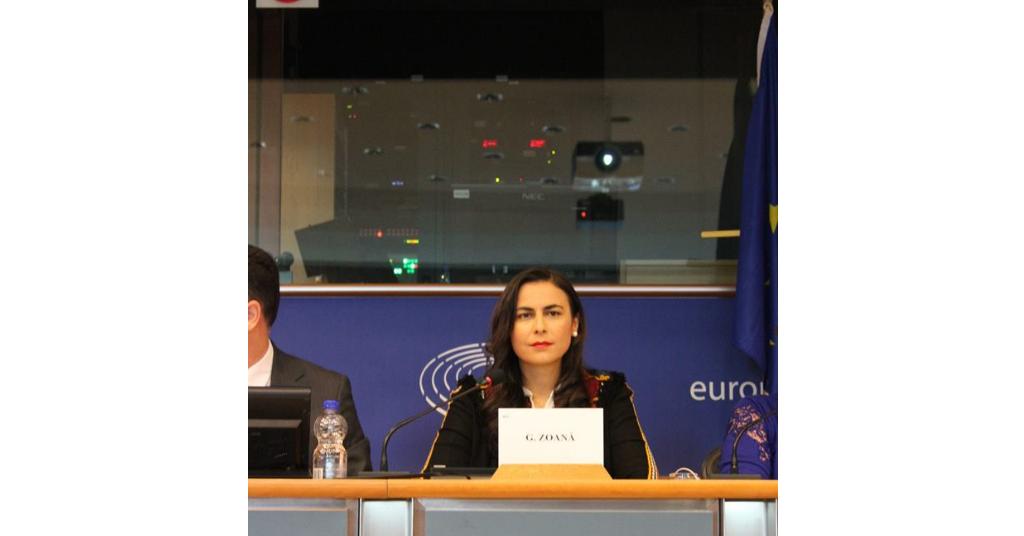 Gabriela Zoană - europarlamentar