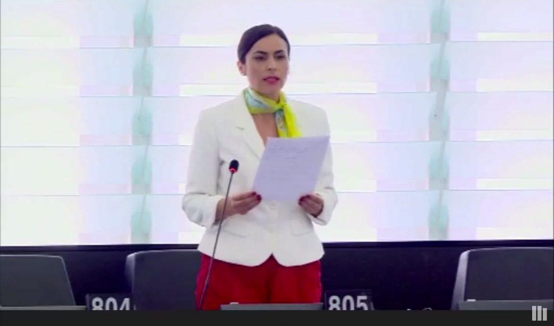 Ordinul de Protectie european - discurs Gabriela Zoana