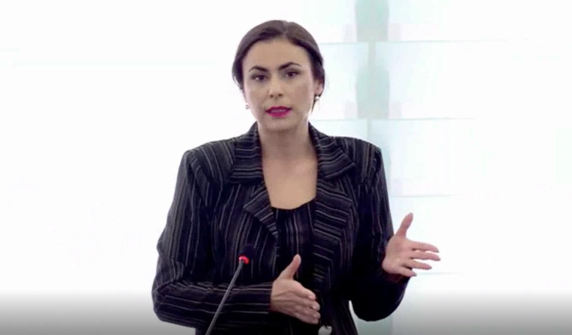 Gabriela Zoana - discurs politic despre importurile de otel din tarile terte