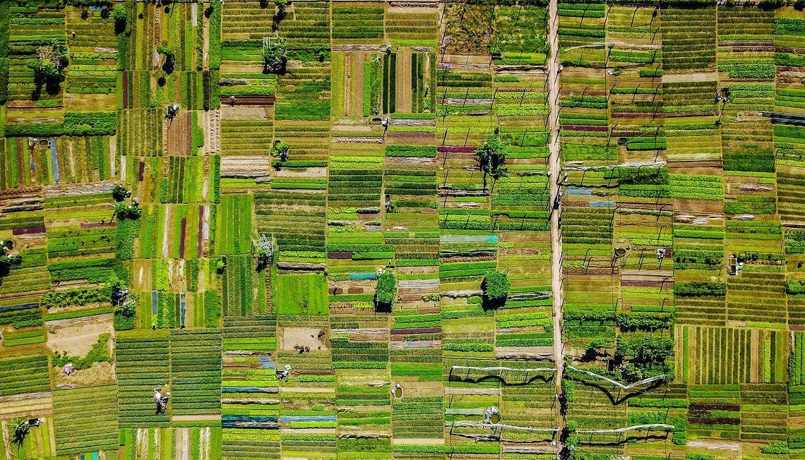 Statistici integrate referitoare la ferme