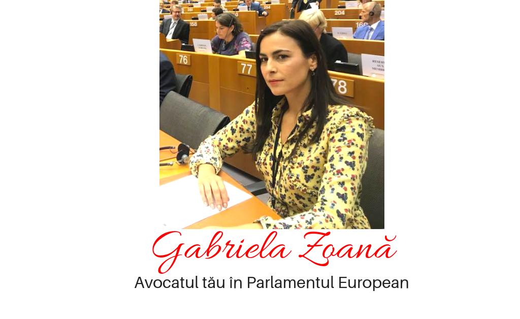 Gabriela Zoana replica dura pentru Monica Macovei