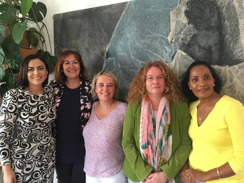 Misiune Comisia FEMM a Parlamentului European la Viena
