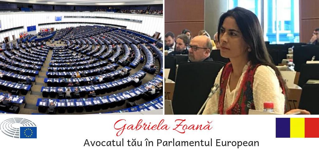Gabriela Zoana - declaratii politice