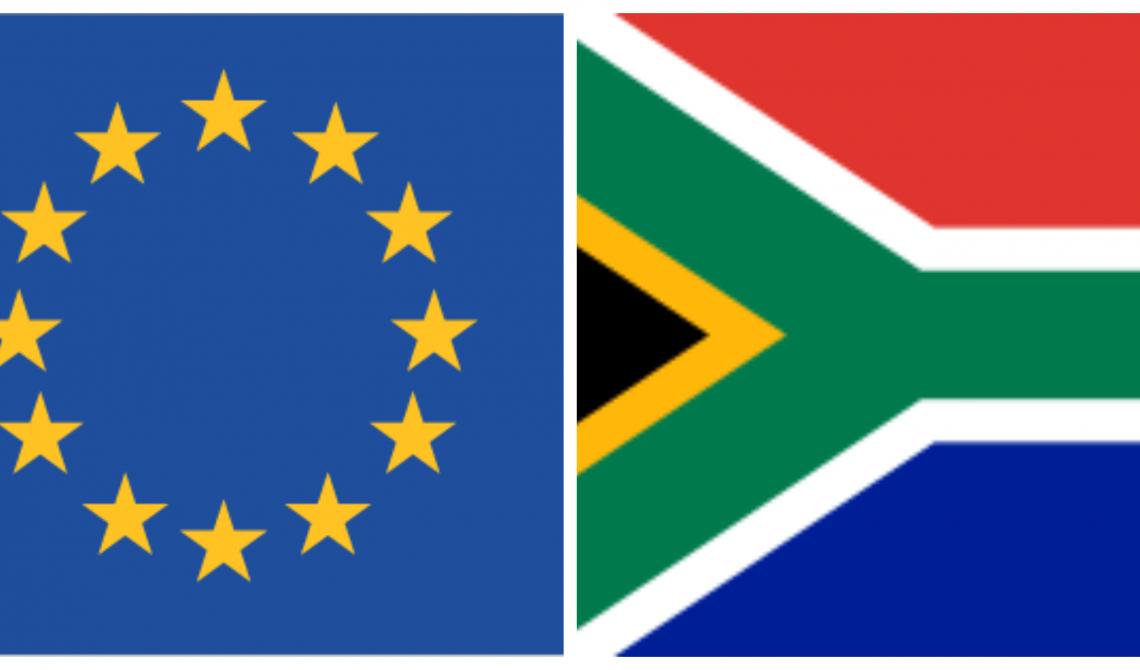 Gabriela Zoana in delegatia UE in Africa de Sud